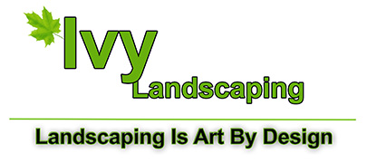 Ivy Landscaping